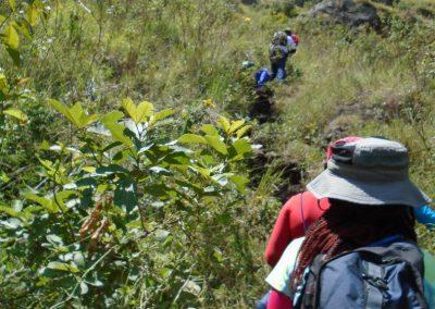 Kenya Day hikes-41