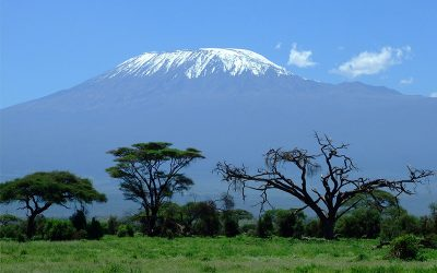 The Amboseli: A Spectacular Masterpiece of Beauty and wildlife