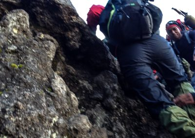 Kilimanjaro-100