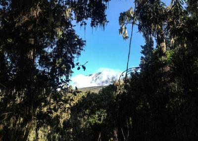 Kilimanjaro-135