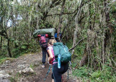 Kilimanjaro-157