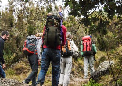 Kilimanjaro-179