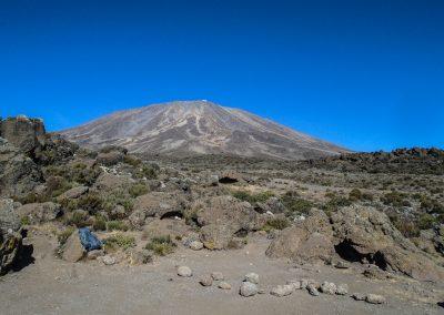 Kilimanjaro-201