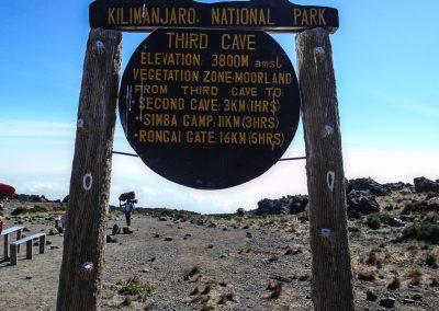 Kilimanjaro-205