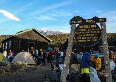Kilimanjaro-212