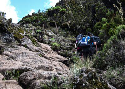 Kilimanjaro-23
