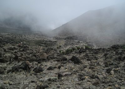 Kilimanjaro-55