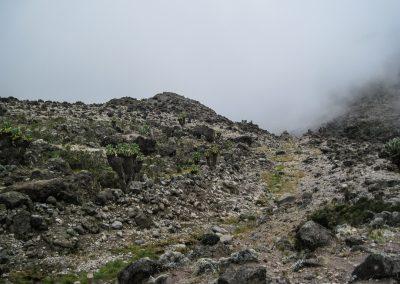 Kilimanjaro-58