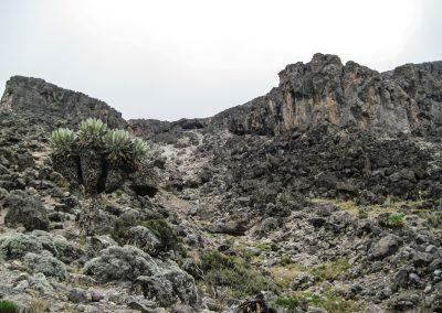 Kilimanjaro-60