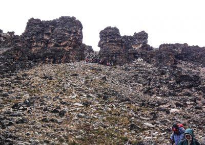 Kilimanjaro-65