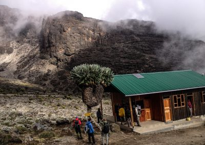 Kilimanjaro-76
