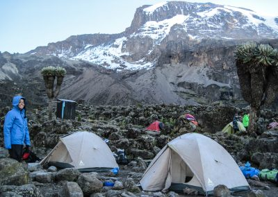 Kilimanjaro-80