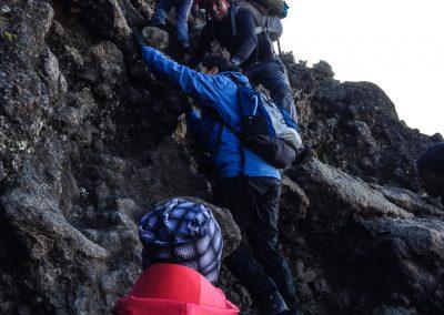 Kilimanjaro-96