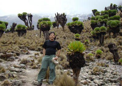 Mount Kenya-101