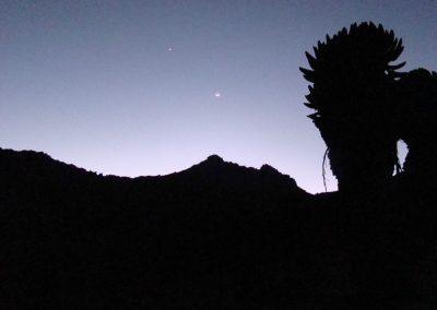 Mount Kenya-154