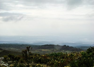 Mount Kenya-17