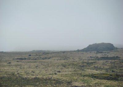 Mount Kenya-26