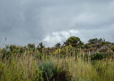 Mount Kenya-28