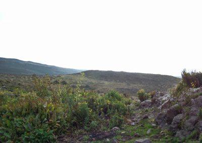 Mount Kenya-30