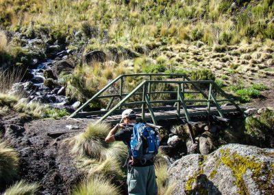 Mount Kenya-46