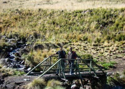 Mount Kenya-48