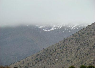 Mount Kenya-94