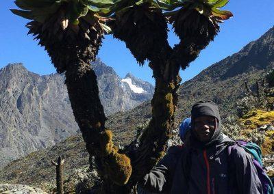 Mt Ruwenzori-14