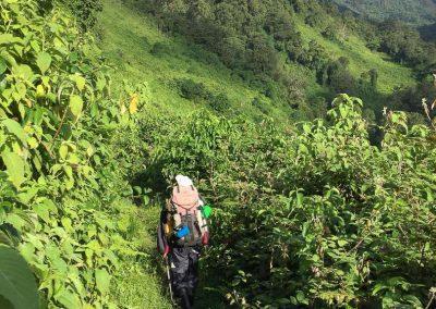 Mt Ruwenzori-21