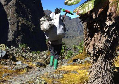 Mt Ruwenzori-23